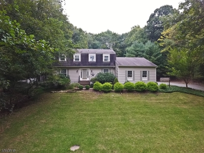 Randolph Twp. Single Family Home For Sale: 13 Cromwell Dr