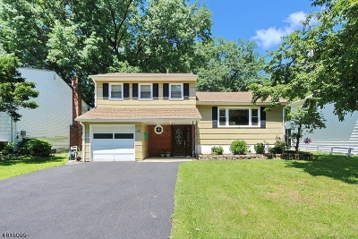 Springfield Single Family Home For Sale: 22 Joanne Way