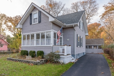 Scotch Plains Twp. Single Family Home For Sale: 14 Johnson St