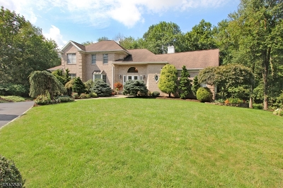 Montville Twp. Single Family Home For Sale: 10 Fox Hollow Rd