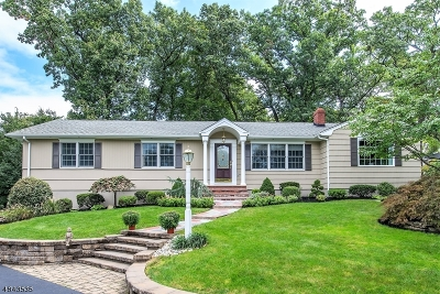 Hanover Twp. Single Family Home For Sale: 18 Birch Hill Dr