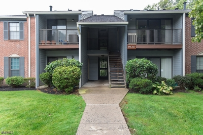 Bernards Twp. Condo/Townhouse For Sale: 358 Penns Way