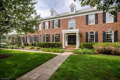 Montgomery Twp. Single Family Home For Sale: 62 Blue Heron Way