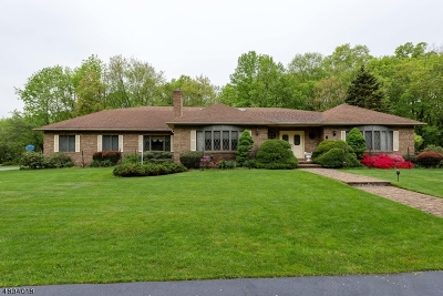 Mendham Twp. NJ Single Family Home For Sale: $849,999