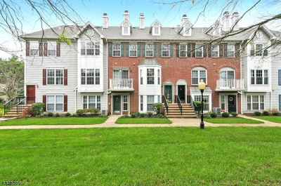 Bridgewater Twp. Condo/Townhouse For Sale: 208 Strull Ct.