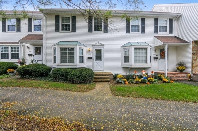 Hillsborough Twp. Condo/Townhouse For Sale: 2107 Jamestown Common