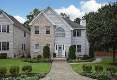 Scotch Plains Twp. Single Family Home For Sale: 1 Nicole Ct