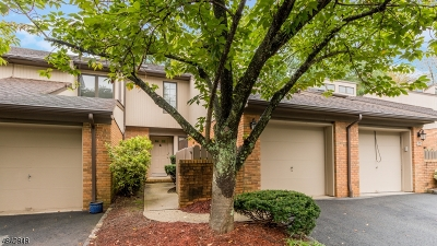 Morristown Town, Morris Twp. Condo/Townhouse For Sale: 14 Byron Ave