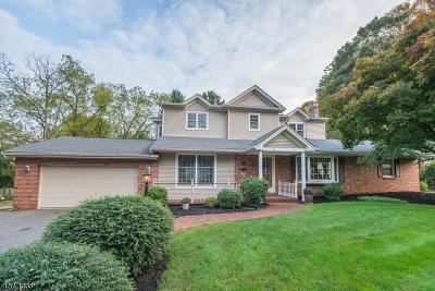 Roxbury Twp. Single Family Home For Sale: 43 Unneberg Ave