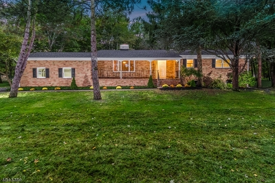 Readington Twp. Single Family Home For Sale: 26 Forty Oaks Rd