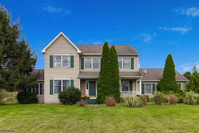 Alexandria Twp., Frenchtown Boro Single Family Home For Sale: 28 Gallmeier Rd