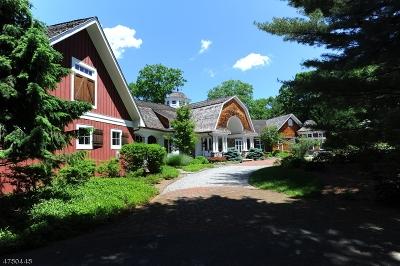 Franklin Lakes Boro Single Family Home For Sale: 876 Trailing Ridge Rd