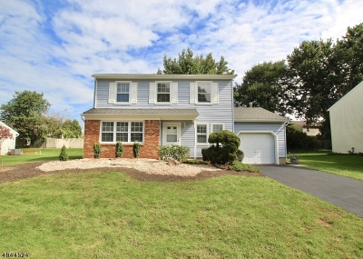 Edison Twp. Single Family Home For Sale: 50 Roxy Ave