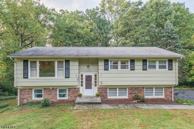 Morris Twp. Single Family Home For Sale: 8 Dorothy Drive