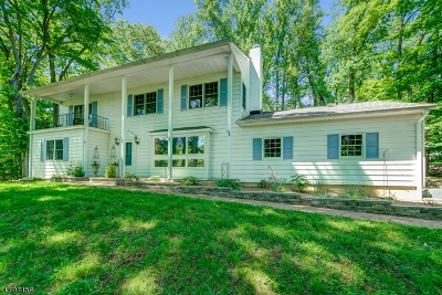 Raritan Twp. Single Family Home For Sale: 30 Cherryville Hollow Rd