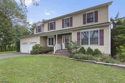Hillsborough Twp. NJ Single Family Home For Sale: $525,000