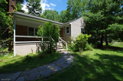 Warren Twp. Single Family Home For Sale: 5 Stony Brook Dr