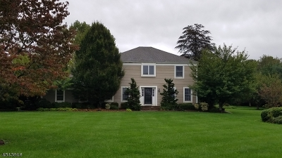 Franklin Twp. Single Family Home For Sale: 121 Locust Grove Rd