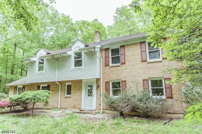 Hillsborough Twp. Single Family Home For Sale: 443 Long Hill Rd