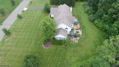 Readington Twp. Single Family Home For Sale: 4 Overlook Rd