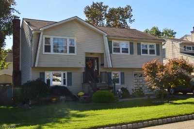 Parsippany-Troy Hills Twp. Single Family Home For Sale: 51 Midvale Ave