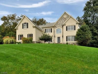Bridgewater Twp. Single Family Home For Sale: 55 Blazier Rd