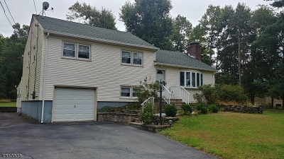 Franklin Twp. Single Family Home For Sale: 183 Wilson Rd