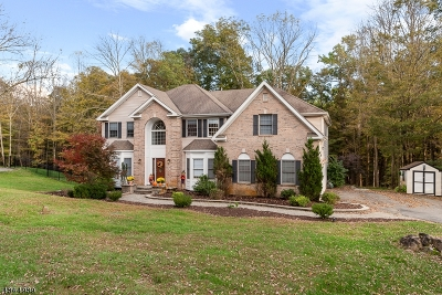 Mount Olive Twp. Single Family Home For Sale: 5 Natures Ct