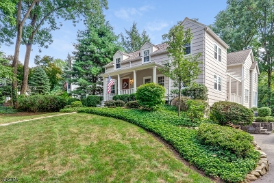 Berkeley Heights Single Family Home For Sale: 20 Spice Hill Rd