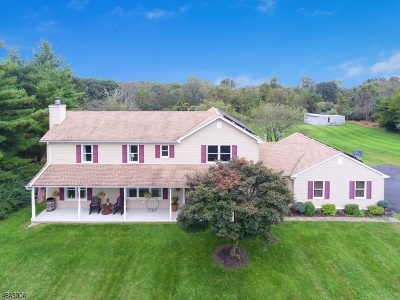 Alexandria Twp. Single Family Home For Sale: 207 Hickory Corner Rd