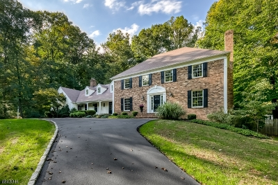 Mendham Twp. NJ Single Family Home For Sale: $1,190,000