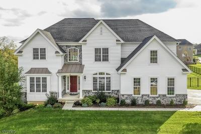 Flemington Boro Single Family Home For Sale: 49 Tiffany Dr