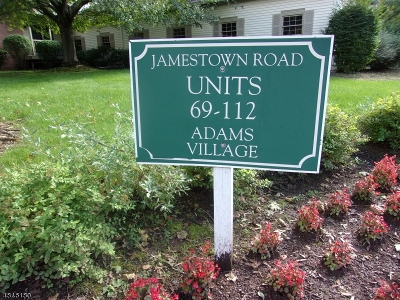 Bernards Twp. Condo/Townhouse For Sale: 84 Jamestown Rd #84