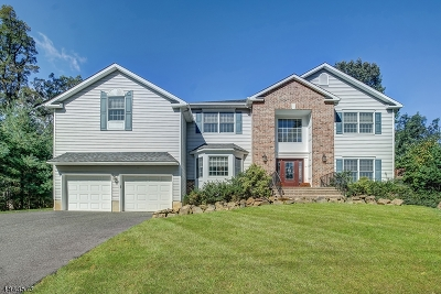 Berkeley Heights Twp. Single Family Home For Sale: 453 Emerson Lane