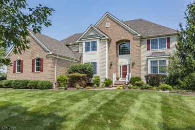 Montgomery Twp. Single Family Home For Sale: 30 Rosewood Ct