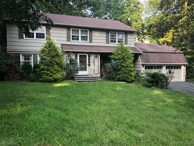 Springfield Twp. Single Family Home For Sale: 4 Clearview Rd