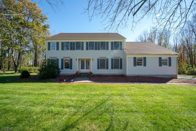 Mount Olive Twp. Single Family Home For Sale: 41 Corey Rd
