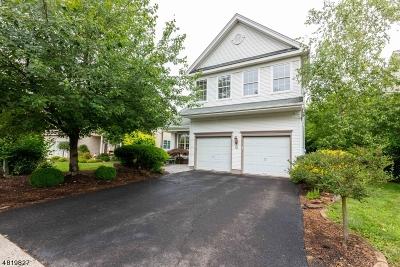 Bridgewater Twp. Single Family Home For Sale: 4 Redmond Ct