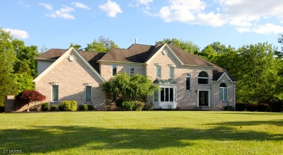 Clinton Twp. Single Family Home For Sale: 5 Sunnyfield Dr
