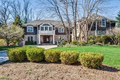 Millburn Twp. Single Family Home For Sale: 296 Hartshorn Dr