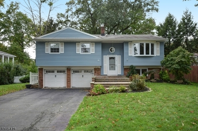 Fanwood Boro Single Family Home For Sale: 9 Byron Ln