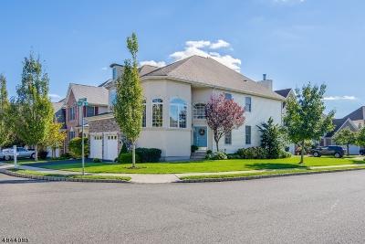 Scotch Plains Twp. Single Family Home For Sale: 201 Throwbridge Dr