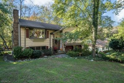 Wayne Twp. Single Family Home For Sale: 52 Cedarcliffe Dr