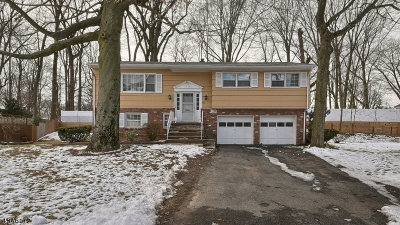 North Plainfield Boro NJ Single Family Home For Sale: $279,000