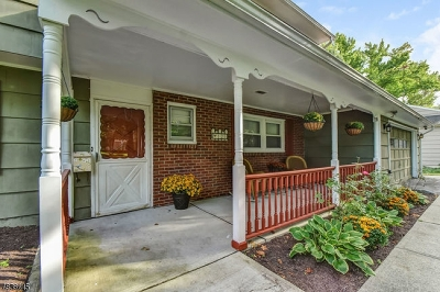 Westfield Town Single Family Home For Sale: 121 Landsdowne Ave