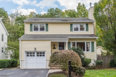 Morris Twp. Single Family Home For Sale: 17 House Rd