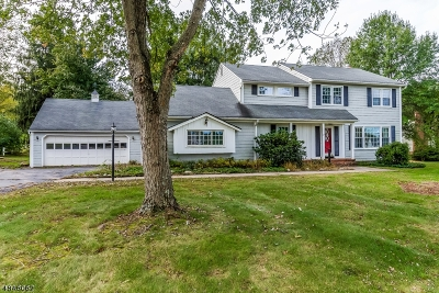 Branchburg Twp. Single Family Home For Sale: 103 Howell Dr