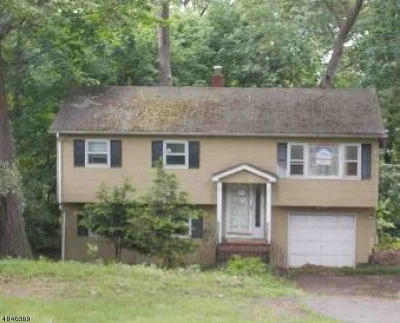 Haledon Boro Single Family Home For Sale: 359 Central Ave