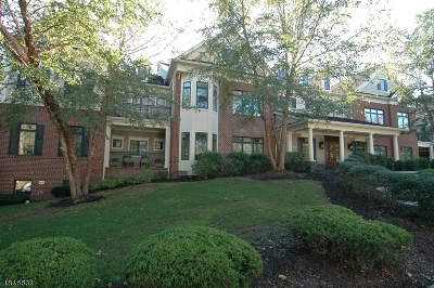 Chatham Boro Condo/Townhouse For Sale: 45-5 S Passaic Ave