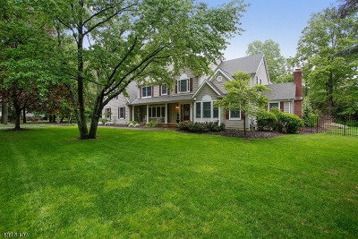 Edison Twp. Single Family Home For Sale: 6 Country Ln